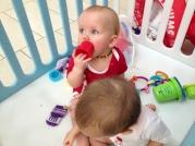 im Baby-Laufstall